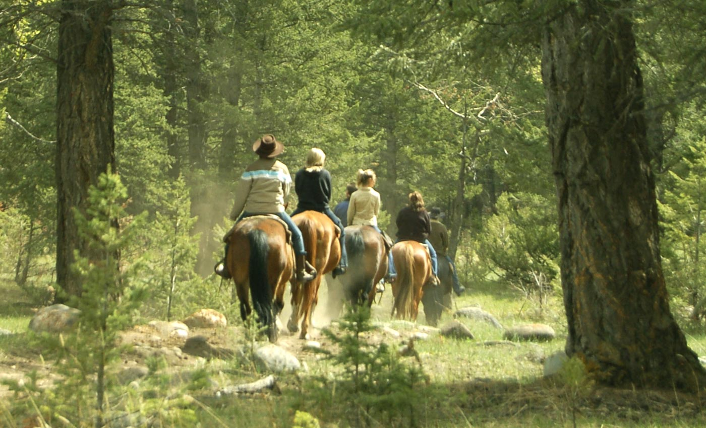 Guided Horseback Trail Rides: Glacier National Park From the