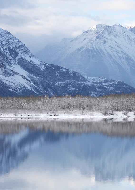 Three deer foraging on a snow covered lake shore, surrounded by snow covered peaks.
