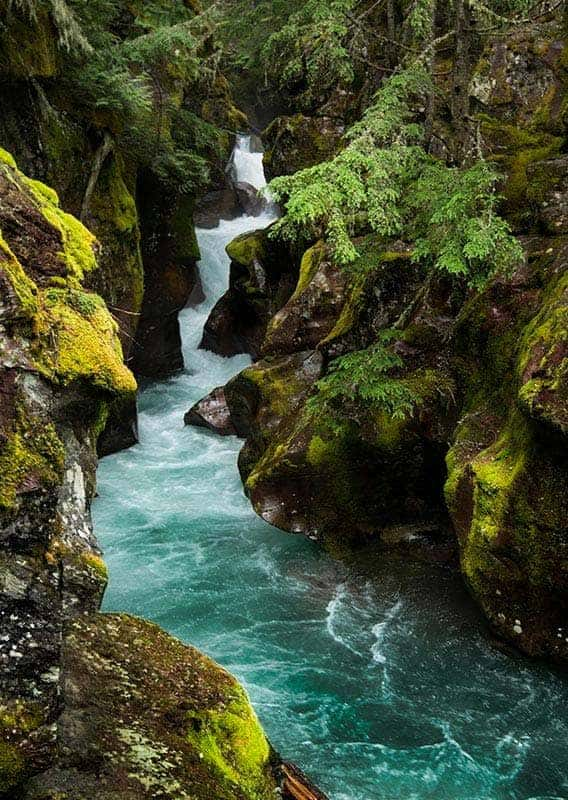 A blue river rushes through moss and lichen covered rocks