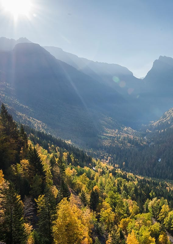 The sun shines over a wide valley with yellow aspen and evergreen trees