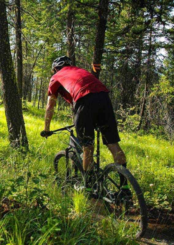 Three mountain bikers ride on a trail through grass and trees