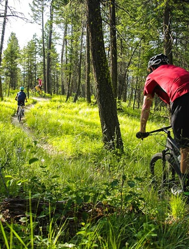 Summer Escapades on the Whitefish Trail