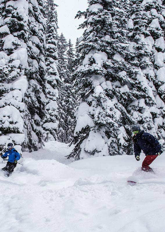 Skiing and Snowboarding at Whitefish Mountain Resort