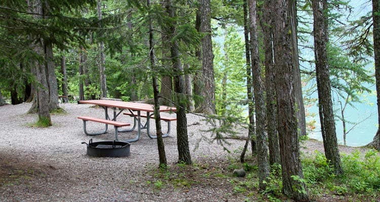 A picnic table nestled among evergreen trees next to a blue lake