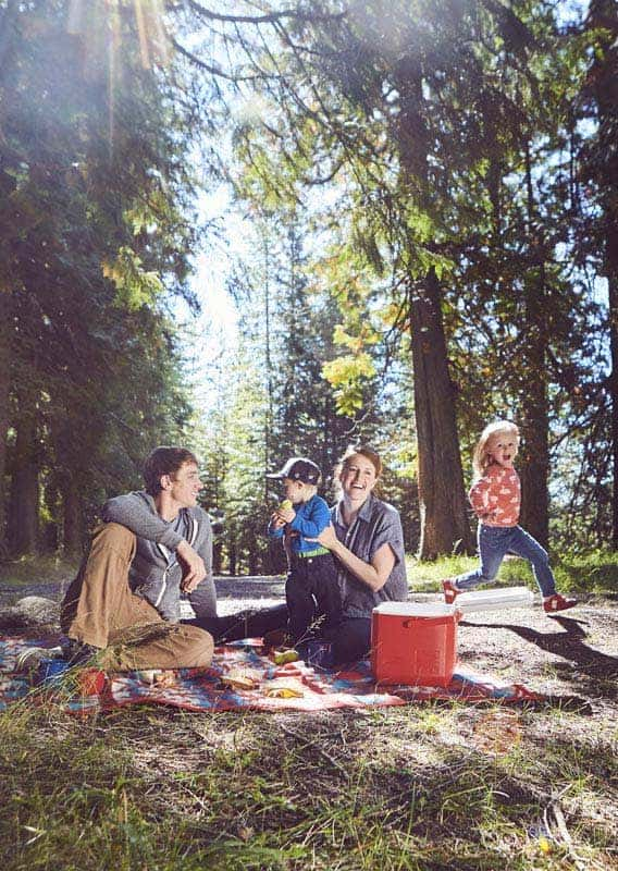 A family picnics under evergreen trees and sunbeams.