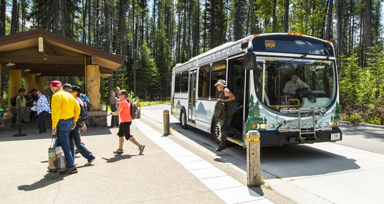 A group of people get off a shuttle bus by a shelter in a forest.