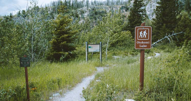 The trailhead sign for Otokomi Lake stands by a trail, heading into a forest