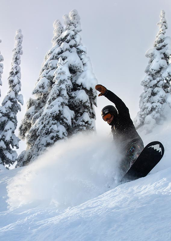 A snowboarder kicks up a spray of powder snow on a tree-covered mountain slope.