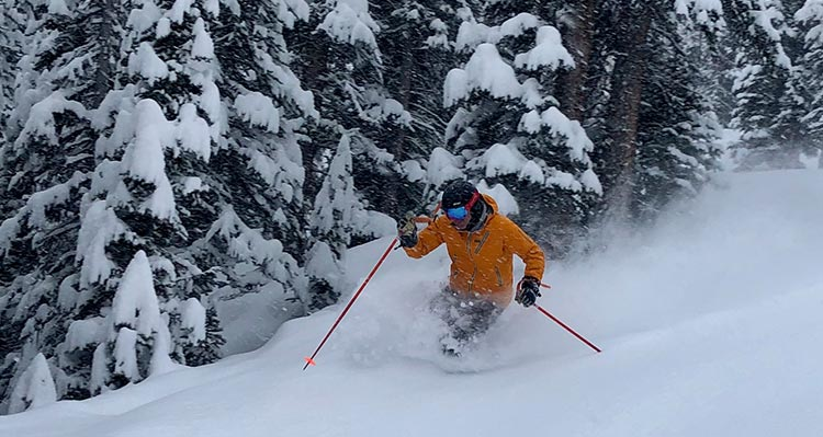 A skiier moved through deep powder snow next to snow covered trees.